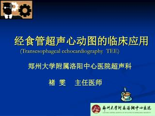 经食管超声心动图的临床应用 (Transesophageal echocardiography  TEE)
