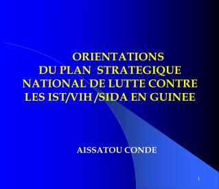 ORIENTATIONS  DU PLAN  STRATEGIQUE  NATIONAL DE LUTTE CONTRE LES IST/VIH /SIDA EN GUINEE