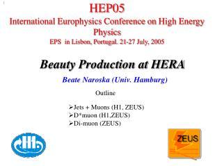 Beauty Production at HERA