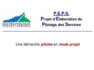 P.E.P.S. Projet d Elaboration du Pilotage des Services