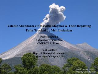 Volatile Abundances in Basaltic Magmas & Their Degassing Paths Tracked by Melt Inclusions