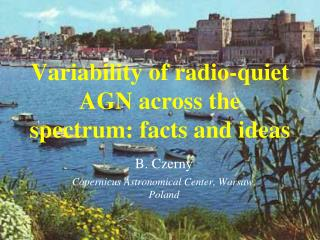Variability of radio-quiet AGN across the spectrum: facts and ideas