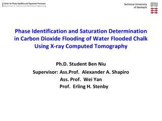 Ph.D. Student Ben Niu Supervisor: Ass.Prof.  Alexander A. Shapiro Ass. Prof.  Wei Yan