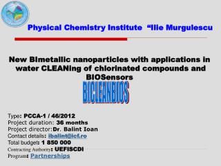New BImetallic nanoparticles with applications in
