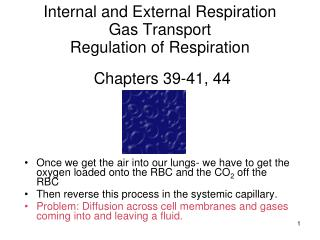Internal and External Respiration Gas Transport Regulation of Respiration