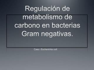 Regulación de metabolismo de carbono en bacterias Gram negativas.