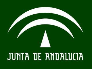 CONSEJERÍA DE EDUCACIÓN DIRECCIÓN GENERAL DE ORDENACIÓN Y EVALUACIÓN EDUCATIVA