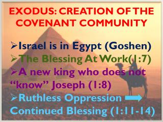 Exodus: Creation of the covenant community