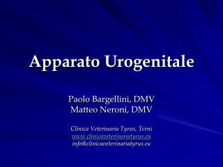 Apparato Urogenitale