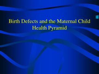 Birth Defects and the Maternal Child Health Pyramid