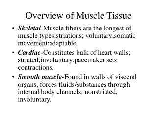 Overview of Muscle Tissue