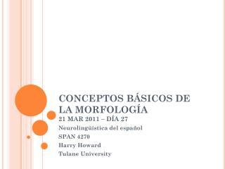 CONCEPTOS BÁSICOS DE LA MORFOLOGÍA 21 MAR 2011 – DÍA 27