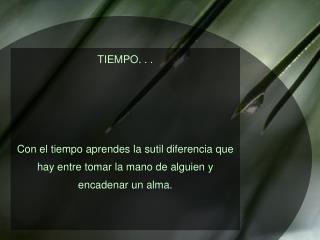 TIEMPO. . .