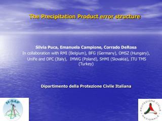 The Precipitation Product error structure