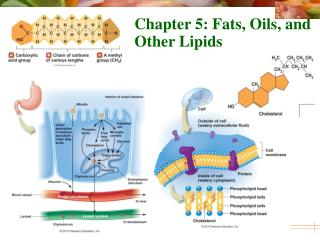 Chapter 5: Fats, Oils, and Other Lipids