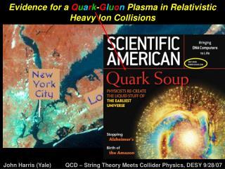 Evidence for a Q u a r k - G l u o n Plasma in Relativistic Heavy Ion Collisions