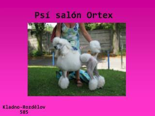 Psí salón Ortex