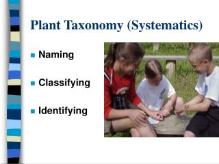 Plant Taxonomy Systematics