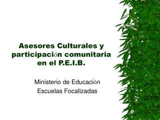 Asesores Culturales y participaci ó n comunitaria en el P.E.I.B.