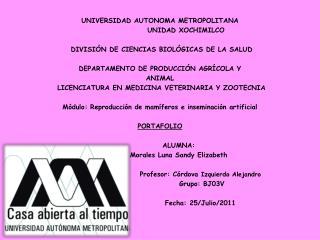 UNIVERSIDAD AUTONOMA METROPOLITANA                   UNIDAD XOCHIMILCO