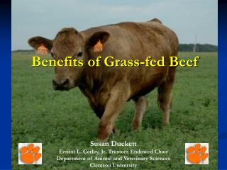 Benefits of Grass-fed Beef