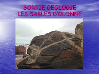 SORTIE GEOLOGIE LES SABLES D�OLONNE