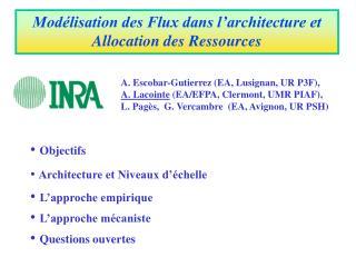 Modélisation des Flux dans l'architecture et Allocation des Ressources