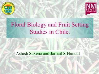 Floral Biology and Fruit Setting Studies in Chile.