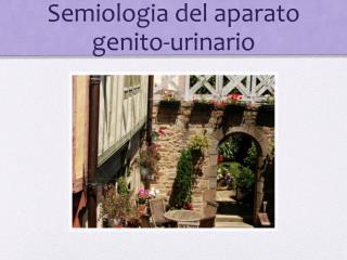 Semiologia del aparato genito-urinario