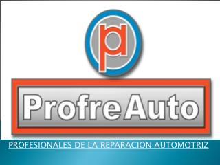 PROFESIONALES DE LA REPARACION AUTOMOTRIZ