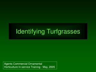 Identifying Turfgrasses