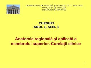 Anatomia regională şi aplicată a membrului superior. Corelaţii clinice