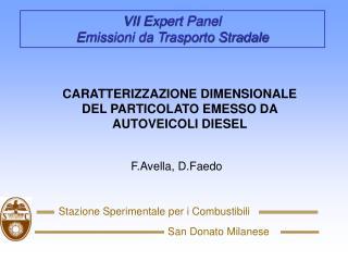 VII Expert Panel                                        Emissioni da Trasporto Stradale