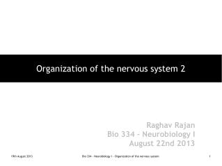Organization of the nervous system 2
