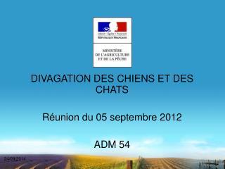 DIVAGATION DES CHIENS ET DES CHATS Réunion du 05 septembre 2012 ADM 54