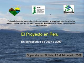 El Proyecto en Peru En perspectiva de 2007 a 2009
