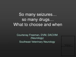 So many seizures… so many drugs… What to choose and when
