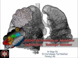 KHDAK'da  Patolojik ve   Moleküler  Değişiklikler,   Tedaviye  Katkıları