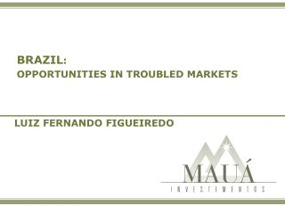 BRAZIL :  OPPORTUNITIES IN TROUBLED MARKETS