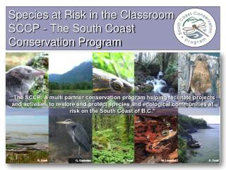 Species at Risk in the Classroom SCCP  - The South Coast  Conservation Program