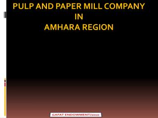 PULP AND PAPER MILL COMPANY  IN  AMHARA REGION