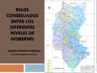 ROLES CONSESUADOS ENTRE LOS DIFERENTES NIVELES DE  GOBIERNO