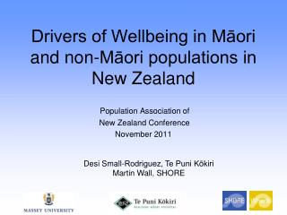 Drivers of Wellbeing in Māori and non-Māori populations in New Zealand