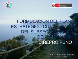 FORMULACION DEL PLAN   ESTRATEGICO CONCERTADO  DEL SUBSECTOR PESCA DEL 2010 AL 2021 DIREPRO PUNO
