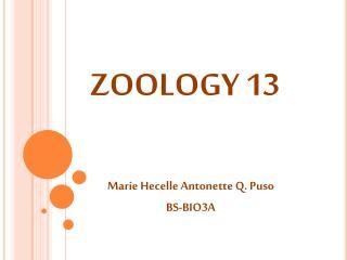 ZOOLOGY 13
