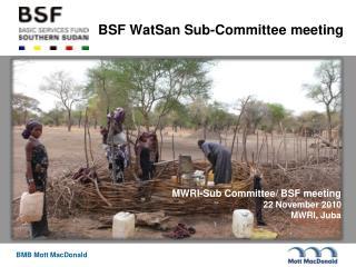 BSF WatSan Sub-Committee meeting
