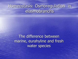 Homeostasis: Osmoregulation  in elasmobranchs