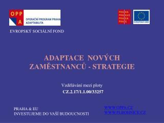 ADAPTACE  NOVÝCH  ZAMĚSTNANCŮ - STRATEGIE Vzdělávání mezi ploty  CZ.2.17/1.1.00/33257