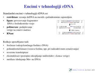 Encimi v tehnologiji rDNA