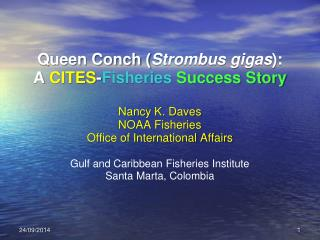 Queen Conch ( Strombus gigas ):  A  CITES - Fisheries Success Story  Nancy K.  Daves